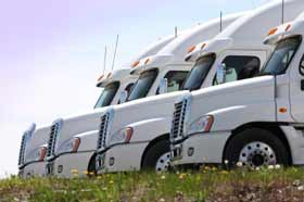 This is a picture of a row of white parked semi-cab trucks.